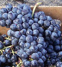 Cab Fran Grapes