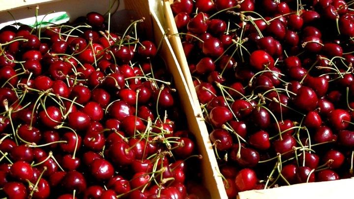 Cherries in Ventoux