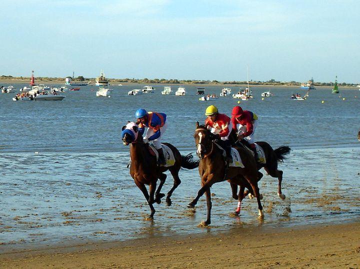 San Lucar and Horses