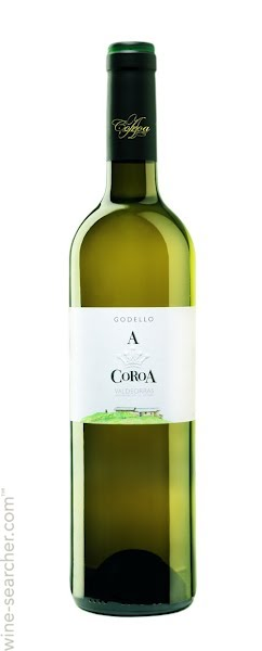 bodegas-a-coroa-godello-valdeorras-spain-10366772