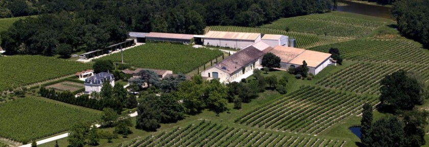 Thieuley Vineyards