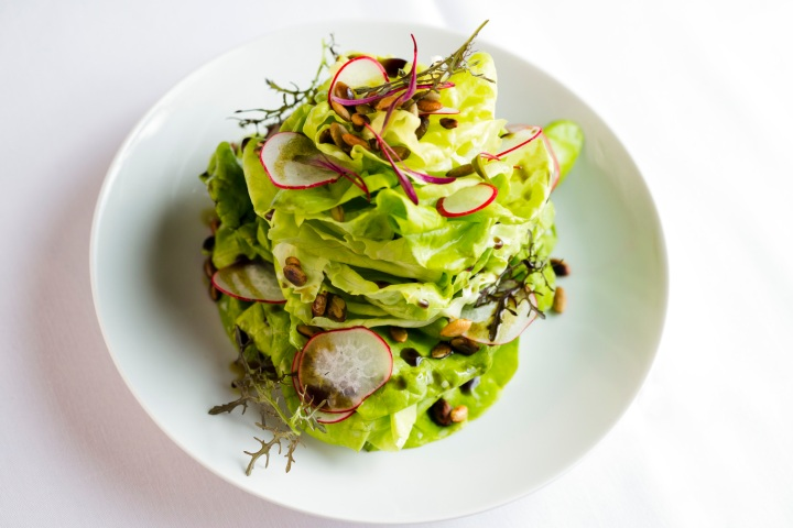 bibb-lettuce-pumpkin-seed-radish-salad