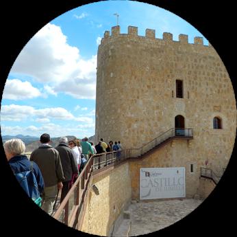 visita-castillo-jumilla
