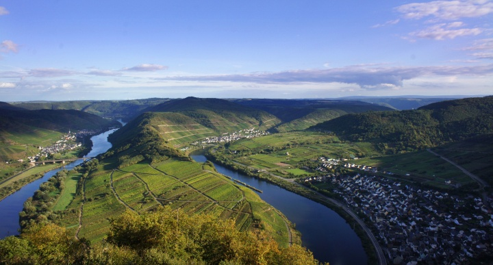 mosel-vineyards-wine-folly