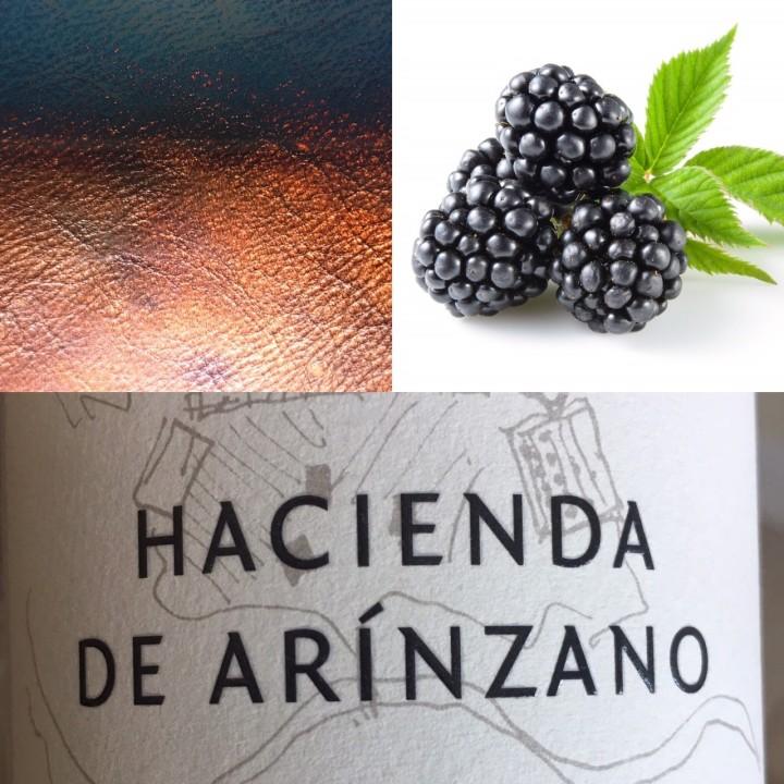 Hacienda Arinzano Flavors