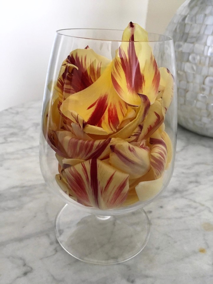 T Glass with Tulips